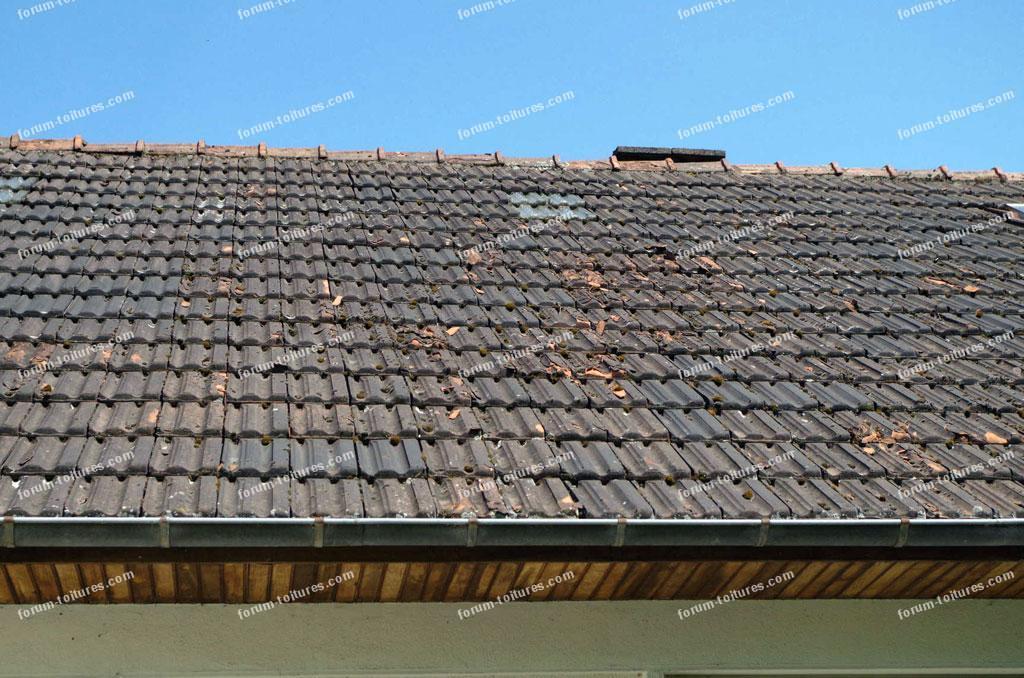 avis sur l'état d'une toiture