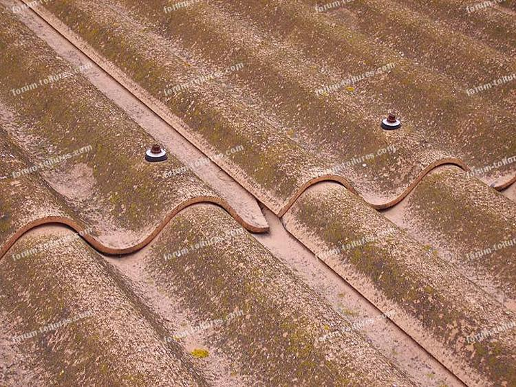 Pose everite - Revêtements modernes du toit